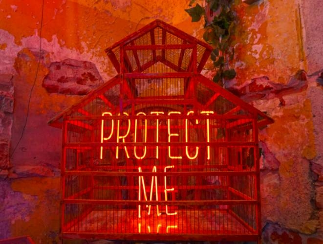 Protect Me (Birdcage)